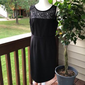 Calvin Klein Illusion Black Lace Sheath Dress 12